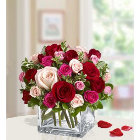 Ravishing Roses (48 Pink , Red  And Peach Roses)