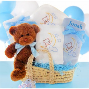 Beary Special Arrival Moses Basket-Boy