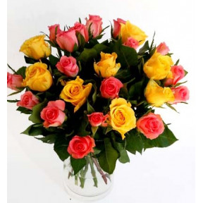 Bouquet of 25 yellow and pink short roses