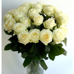 A bouquet of 19 long white roses
