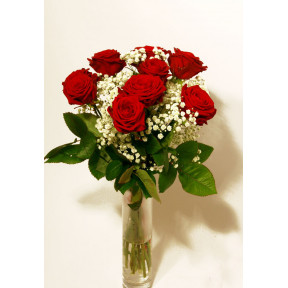 Bouquet of red roses and Gypsophila (9 Roses)