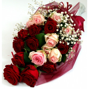 Bouquet of red and pink roses wrapped (15 Roses)