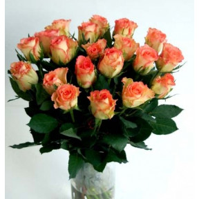 Bunch of pink roses, 50cm (19 Roses)