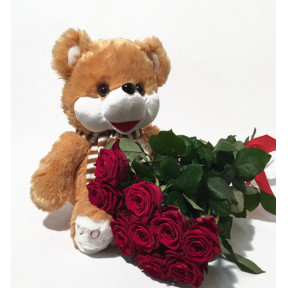 Teddy Bear and Red Roses (7 Roses)
