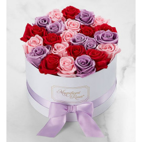 Magnificent Roses® Preserved Romantic Medley Trio (Magnificent Roses® One Dozen Romantic Medley)