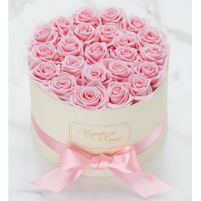Magnificent Roses® Preserved Pink Perfection (Preserved Roses- Pink One Dozen)