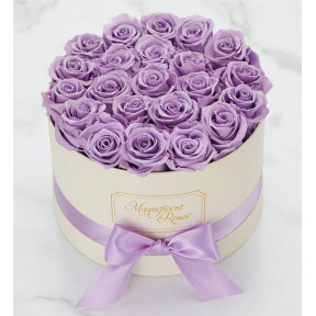 Magnificent Roses® Preserved Lavender Dream (Preserved Roses- Lavender One Dozen)
