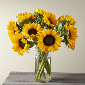 Honey Bee Sunflower In Glass Vase (12 Stem Sunflowers in Vase)