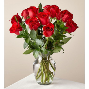 Red Roses With Vase (12 Red Roses no Vase)