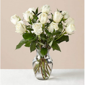 Moonlight White Rose Bouquet With Ginger Vase (12 White Roses With Glass Vase)