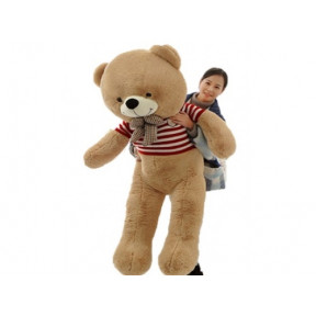 Amazing Giant Teddy (1.6M)