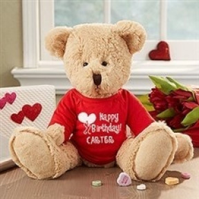 Personalized Birthday Shirt & Teddy Bear