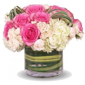 Bright White & Pink Roses In A Vase