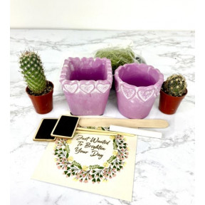 Me and Mom Diy Plant Gift Box (Cactus)