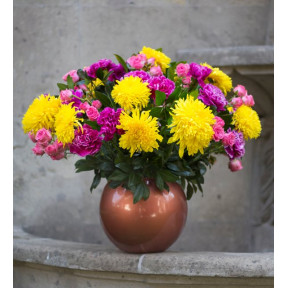 Yellow Chrysanthemums And Mini Pinks