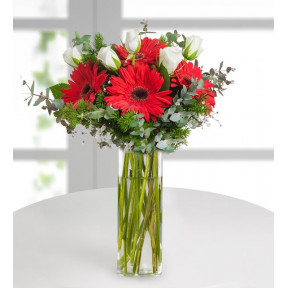 White Roses And Red Gerberas - Cherish The Feelings