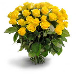 Yellow roses (Medium)