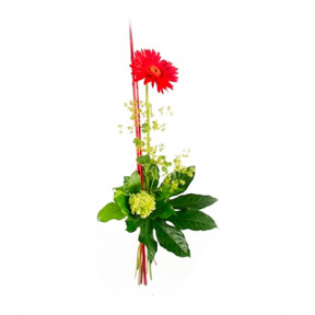 Send Bouquet Red Star As Blombud