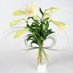 Send bouquet Lily blombud
