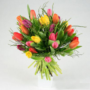 Send the bouquet of tulips in lots like flower buds