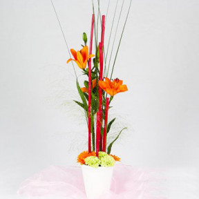 Send Hight arrangement of orange blombud