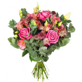 Send The Bouquet Celebrate As Flower Messenger (Standard)