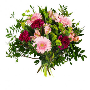 Send The Bouquet Sweet As A Flower Messenger (Standard)
