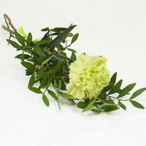 Funeral hand flower with a lime carnation, Grant