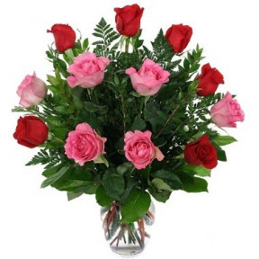 12 Pink And Red Roses