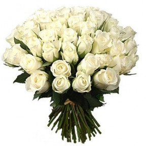 Three Dozen White Roses Bouquet