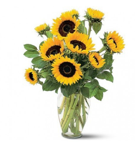 Sunflowers Vase Included