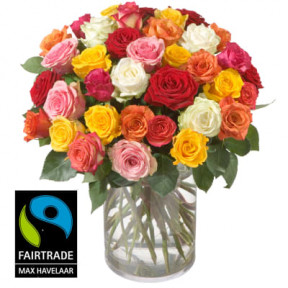 Bouquet of Roses (36 Roses) with Fairtrade Max Havelaar-Roses - Big Blooms