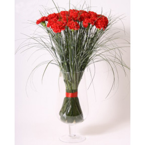 Red carnation bouquet (Large)