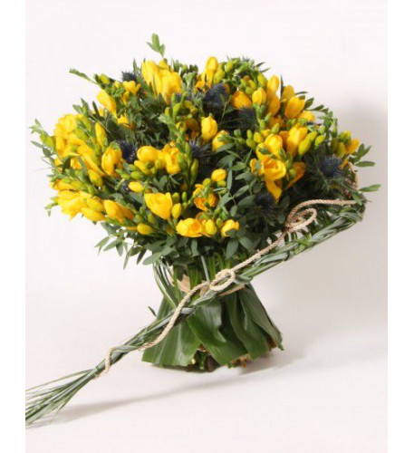Bouquet of 50 freesia (Small)