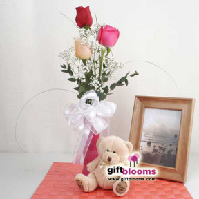 3 Multy-colored Roses in a Vase And  Teddy Bear