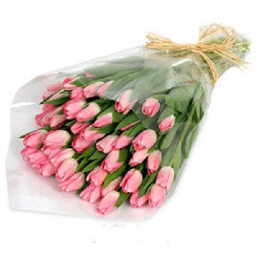 Bouquet of 39 pink Tulips