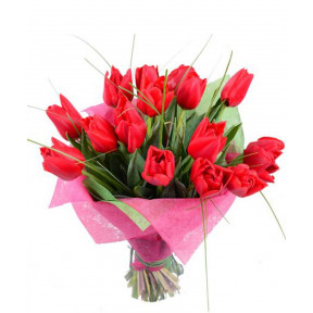 Flower Bouquet of 15 Red Tulips