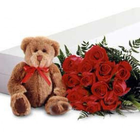 Red Long Stem Roses with a Teddy Bear