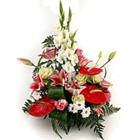 Anthurium red (Small)