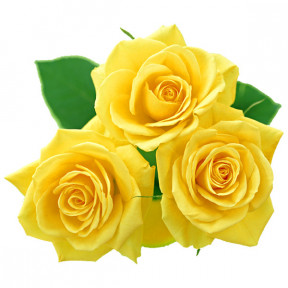 Trio of yellow roses (Small)