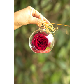 Sphere With Preserved Rose (Small Sphere)