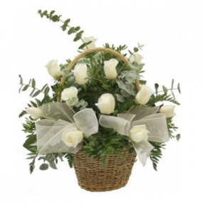 Basket of 18 white roses