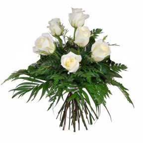 Bouquet of 6 purity white roses