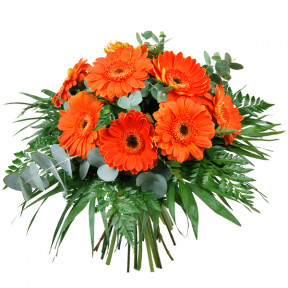 Gerbera bouquet (Medium)