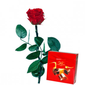 Preserved Red Rose And Chocolates