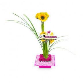 Floral Arrangement For Her-5