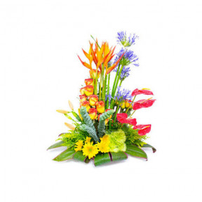 Floral Arrangement For Her-6