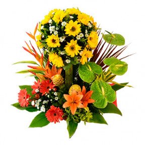 Floral Arrangement For Birthday-16