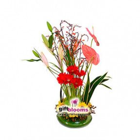 Floral Arrangement For Her-2