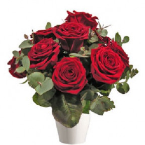Red Roses (7 Roses)